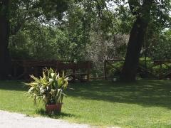 esterno-fattoria7